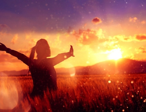 HEAL, a Guided Meditation